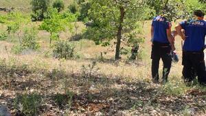 Kayıp çobanın cesedi dağlık alanda bulundu