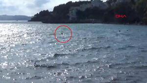 Sinopta alabora olan kayıktaki aile, kıyıya yüzerek çıktı
