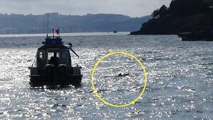 Tekne alabora oldu Ölümden döndüler