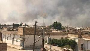 PKK/PYD'li teröristler buğday tarlasını yakıp, halay çekti
