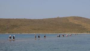 Ayvalık'ın 2 adası 'Kesin Korunacak Hassas Alan' ilan edildi