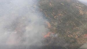 Urlada 1 hektarlık makilik alan yandı