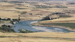 Diyarbakırda arazide erkek cesedi bulundu