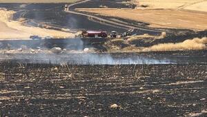 10 bin dekar hububat ekili arazi yandı