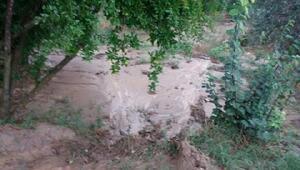 Karacasuda şiddetli yağmur ve rüzgar bahçelere zarar verdi