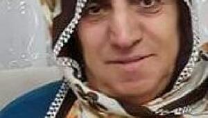 Bahçede çalışırken arı sokan kadın öldü