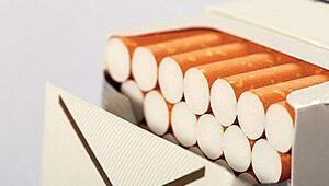Sigara erkekte  kan kanseri  sıklığını arttırıyor
