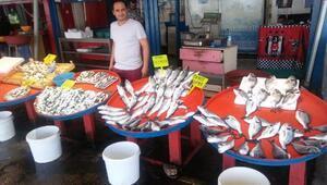 Bandırmada balık satışlarına hareket geldi