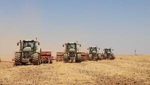 Ceylanpınarda 110 bin dekarlık alanda mısır ekimi başladı