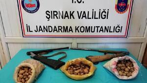 Şırnakta salep soğanı toplayan 3 kişiye 204 bin para cezası