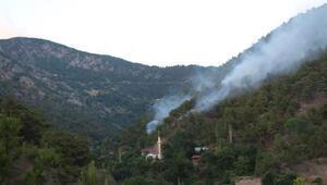 Tokatta orman yangınında 30 dekarlık alan zarar gördü