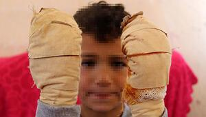 Efe'ye dehşeti yaşattı Ağlamasını duyan komşuları yetişti