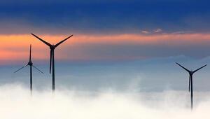 IEA Başkanı Birol: Deniz üstü rüzgar enerjisinde patlama yaşanacak