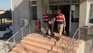 PKKya eleman sağlayan terörist, Licede yakalandı