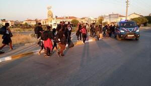 Ayvalıkta 50kaçak göçmen yakalandı