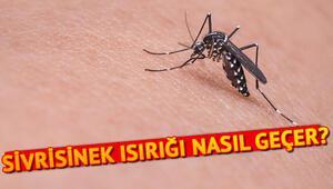 Sivrisinek ısırığı nasıl geçer Sivrisinek ısırığına ne iyi gelir