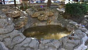 Süs havuzunda akıma kapılan Yağmurun durumu kritik