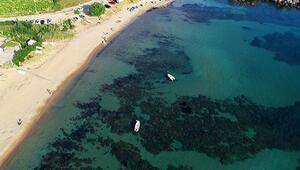 Kuzey Egenin en huzurlu adası Deniz tatili için şimdi tam zamanı...