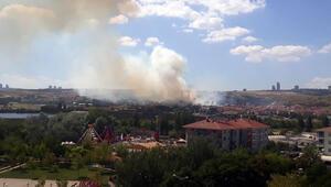 Ankarada orman yangını...