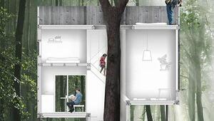 Danimarka'da ağacın üstüne yapılan otel 70'ten fazla rezervasyon aldı bile