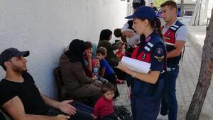 Ayvalıkta 99kaçak göçmen yakalandı