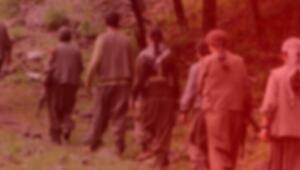 Bakanlık duyurdu: 5 terörist etkisiz hale getirildi