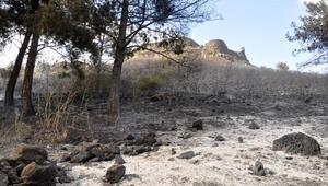 Tarihi Toprakkale Kaleside yangın