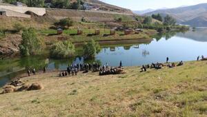 Yüksekovada, baraj gölünde kaybolan 2si kardeş 3 çocuk aranıyor