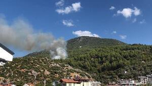 Fethiyede orman yangını