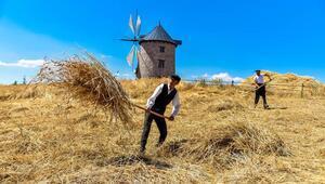 Buğdayın ekmek olma yolculuğu