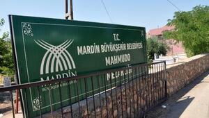 Vasiyeti 42 yıl sonra gerçekleşti; İzmirdeki mezarı Mardine taşındı
