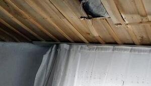 Eve düşen buz kütlesi çatıyı deldi