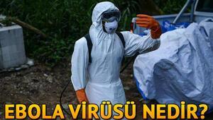 Ebola virüsü nedir Ebola virüsü nasıl bulaşır