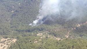 İzmirde tabiat parkı yakınında orman yangını