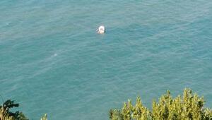 Denizde kâbus... 5 kişi akıntıya kapıldı