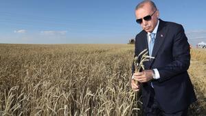 Cumhurbaşkanı Erdoğan müjdeyi verdi: Kurban Bayramından önce ödeyeceğiz
