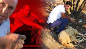 Baklavacı kardeşler tahliye oldu, yakınları kurban kesti