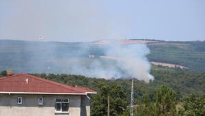 Pendikte orman yangını