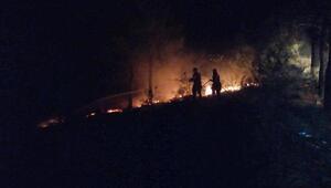 Amasyada havai fişekten orman yangını çıktı