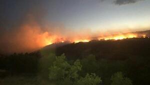 Elazığda orman yangını