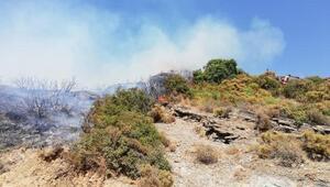 Datça'da yangın