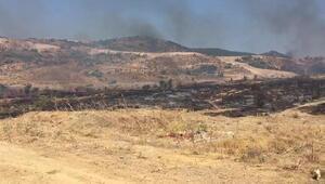 Foçada 4 hektar makilik alan yandı