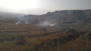Ağaçlandırma sahasına dikilen 250 fidan yandı