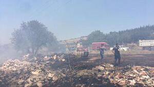 Turgutluda 20 dönüm makilik alan yandı