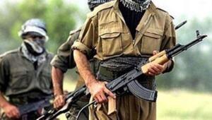 Cilo Dağında 2 terörist etkisiz hale getirildi