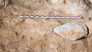 Son gün bulundu 350 bin yıllık...