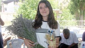 Mersin'de lavanta hasat günü