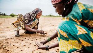 BMden gıda güvenliği alarmı