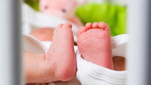 Taşıyıcı annelik nedir
