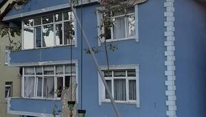 Beykozda facianın eşiğinden dönüldü: Dev çınar ağacı binanın üzerine böyle devrildi